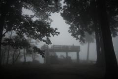 雲海を見に来たら自分が雲海に入ってしまったでござる(・_・;)