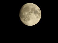 訳あって月撮りました(もしや投稿第一号??)