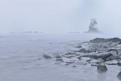 厳冬の雨晴海岸