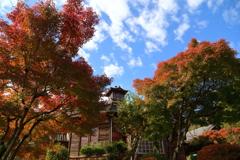 秋景の・・