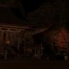 紅葉ライトアップ 神宮寺 再