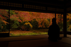秋深し 瑠璃光院
