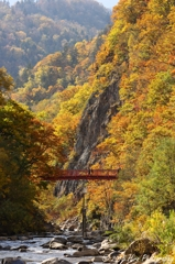 変わる季節と秋の色