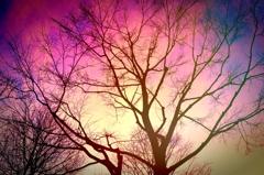 寂しい黄昏と焦燥の空