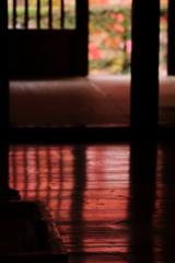そうだ京都も素晴らしいが・・ 三題 うつりこみ