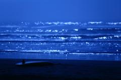 青春のフォークソング   八月の濡れた砂