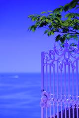 懐かしの昭和歌謡    夏の扉