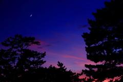 懐かしの昭和歌謡    夕月