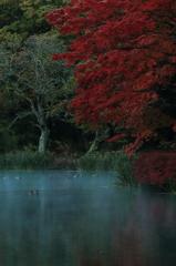 雲場池 三題     静