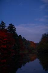 秋の夜  三題    雲場池