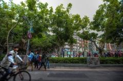 台北市内、公園