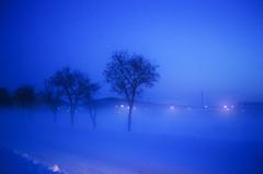 氷点下の街灯り
