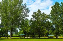 午後の公園にて-8