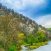 オサラッペ川とコブシの花咲く北邦野草園