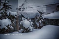 正月なのに雪なんて