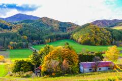 富良野の秋