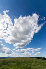 雲に誘われて
