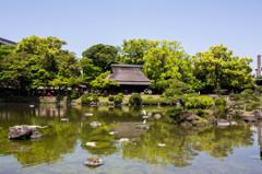 水前寺公園 5