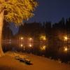 2014/11/02_夜の別所沼公園