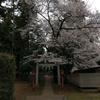 2019/03/29_伊奈崇霊社の桜