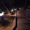 2017/03/12_夜の香港公園