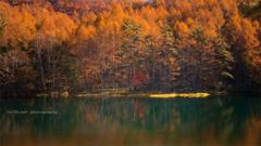 秋の 御射鹿池