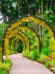 yellow arch