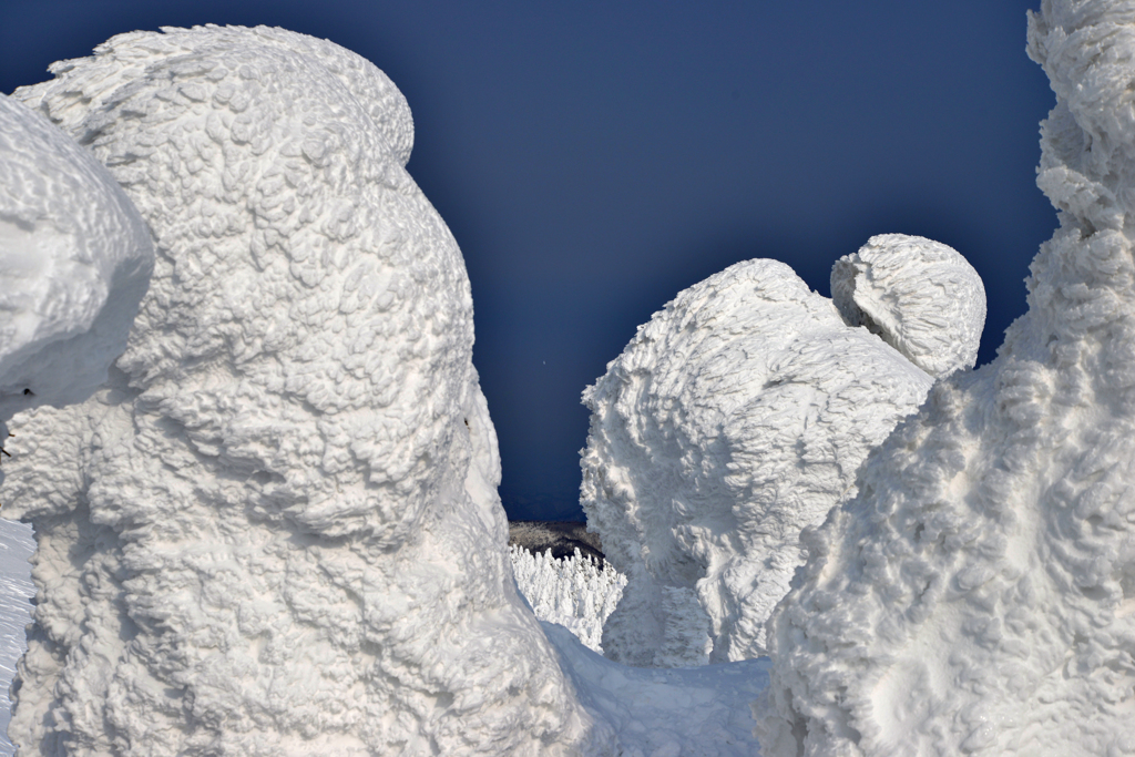 樹氷群の先に広大な樹氷群 (山形蔵王)26.2.1