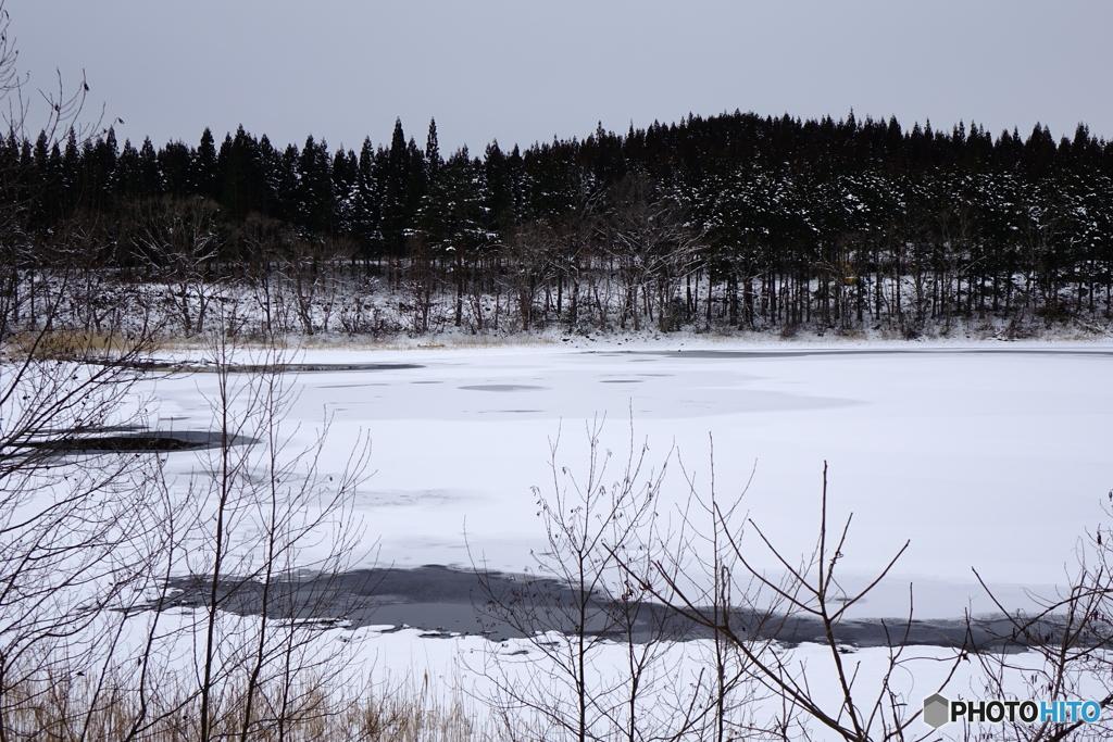 冬の散策2020y-73