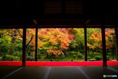 圓光寺・庭園