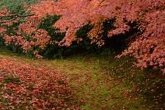 虹の苔を朱に染めて
