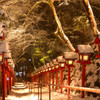 貴船神社・雪の日限定ライトアップ1