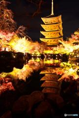 東寺の水鏡