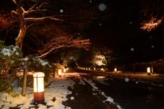 小雪舞い散る二尊院