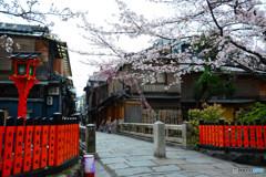 桜が咲いておす