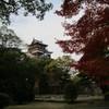 鯉城の紅葉