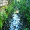 路地裏の水路