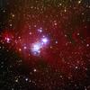 クリスマスツリー星団とコ-ン星雲