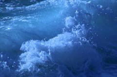 南国の造形波