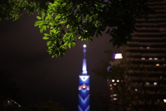 Night Tower