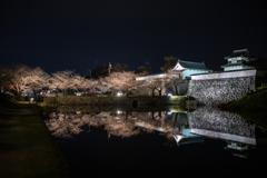 第10回 福岡城さくらまつり