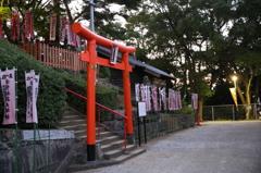宇賀稲荷神社 鳥居