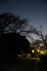 夜明け前の名島門