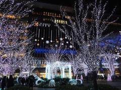 博多駅 クリスマス・イルミネーション2013