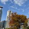 Autumn in YOKOHAMA①