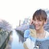 桜並木と桜井さん