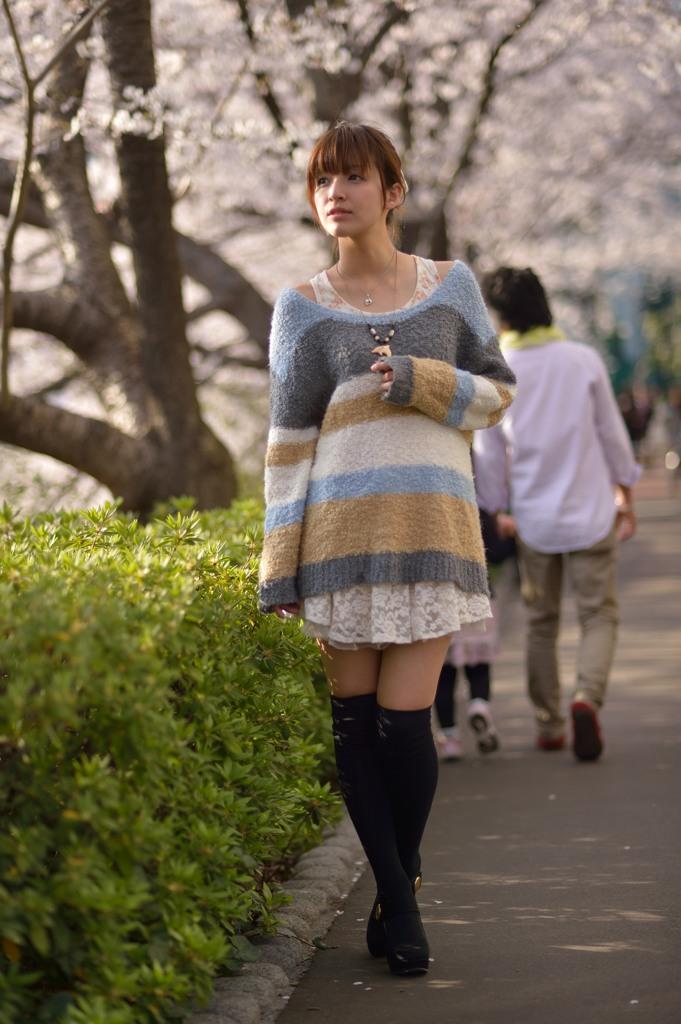 桜並木で桜井さん