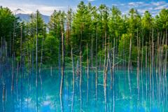 青い池の夜明け