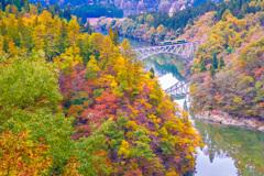 紅葉 只見川