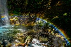 夏の白藤滝